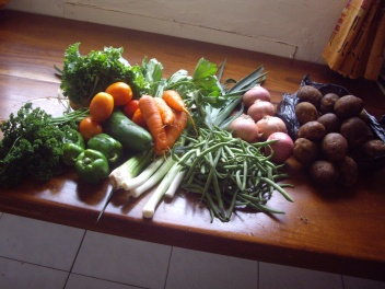Market days were awesome. We got this haul of fresh veggies for $1.50 USD. Lasted us for an entire week.